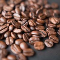 Grounds for Investment: Opportunities in Southeast Asia's Coffee Industry